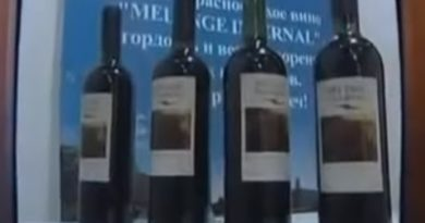 из чего делают вино