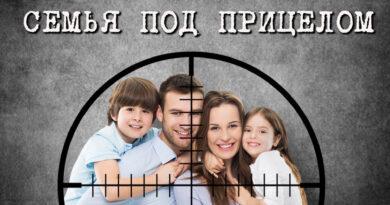 материалы законе семейно бытовом насилии