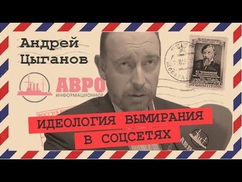 Деструктивный контент как образ врага (Андрей Цыганов)